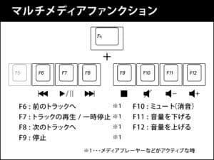 maestroFL-web-50